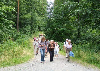 Wanderung im Schönbuch